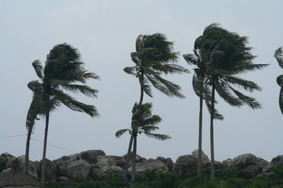strong-wind-1342366